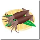 エギングで釣った簡単なアオリイカのさばき方